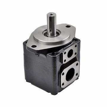 Rexroth PVV1-1X/040RA15DMB Vane pump
